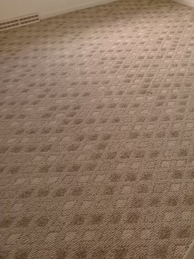 Carpet Cleaning Altoona Pa Steam Cleaning Tile Stripping